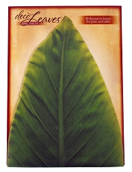Large Banana Deco Parchment Leaves Set of 10