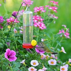 Hummingbird Basket Planter Feeder Set of 6