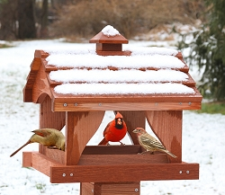 Pavilion Cedar Fly-Through Bird Feeder