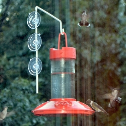 Dr. JB's Clean 16 oz. Window Hummingbird Feeder All Red