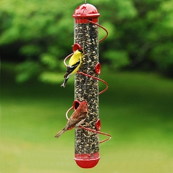Bird Quest Red Spiral Sunflower Feeder 17