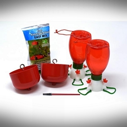 Big Red Hummingbird Feeder Starter Box