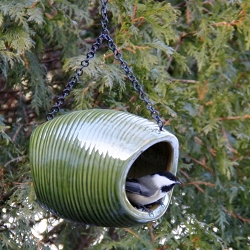 Mango Stone Fly-Through Bird Feeder Deep Green
