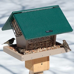 Birds Choice Recycled Plastic 7 Qt 2-Sided Hopper w/Angled Suet Cages