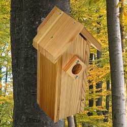 Select Cedar Country Squire Peak Roof Bird House