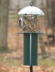 Pole Mounted Seed Cylinder Feeder w/Weather Dome & Baffle
