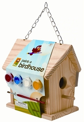 Paint-A-Birdhouse Kit