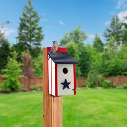 Audubon Patriotic Bluebird House