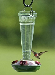Audubon Torchiere Hummingbird Feeder 8 oz.