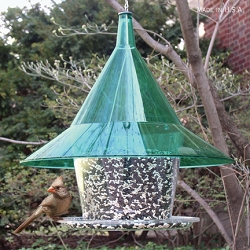 Sky Cafe Bird Feeder Emerald Green