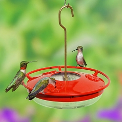 HummZinger HighView 8oz Hummingbird Feeder