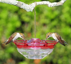 HummBlossom Mini Hummingbird Feeder 4 oz. Rose