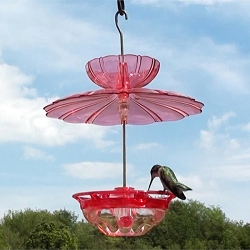 HummBlossom Hummingbird Feeder w/Accessory Kit