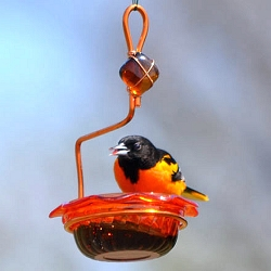 Copper Single Cup Oriole Jelly Feeder