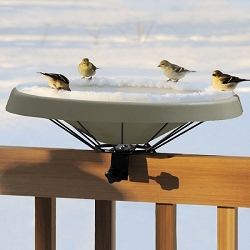 Birds Choice Deck Mounted Heated Bird Bath Green