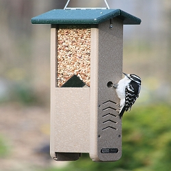 Recycled Plastic Woodpecker Shelled Peanut Feeder w/Hanging Cable