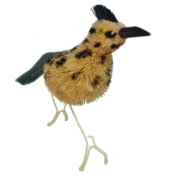Brushart Roadrunner