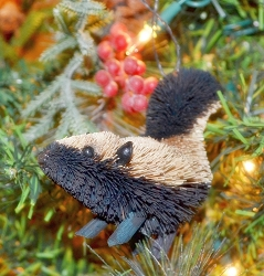 Brushart Skunk Ornament