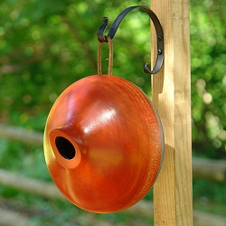 Mango Tree Ellipse Bird Home Orange