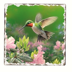 Hummingbird #1 Tumbled Tile Coaster Set of 4