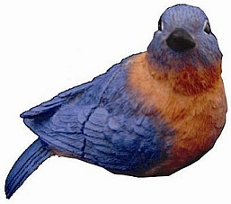 Eastern Bluebird Fly Through Window Magnet