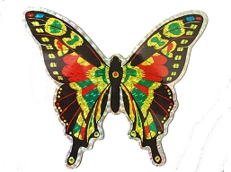 Large Multi-Colored Butterfly Screen Saver Magnet
