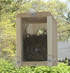 Conservation Window Nest Box