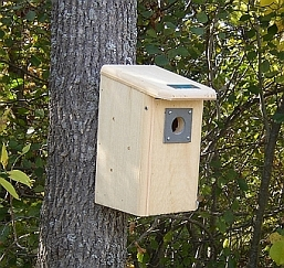 Conservation Backyard Bird House