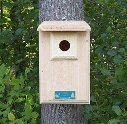 Conservation Western/Mountain Bluebird House
