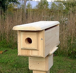 Conservation Horizontal Bluebird House