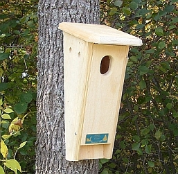 Conservation Peterson Slant Front Bluebird House