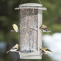 Squirrel X-1 Squirrel Resistant Bird Feeder