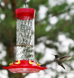 Diamond 30 oz. Hummingbird Feeder