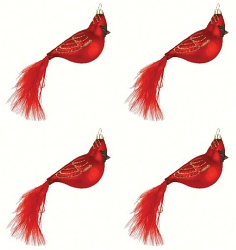Cobane Studio Cardinal with Feather Tail Blown Glass Ornament Set of 4