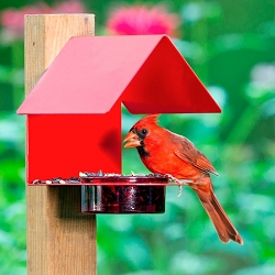 Fence/Post Bird Feeder Red