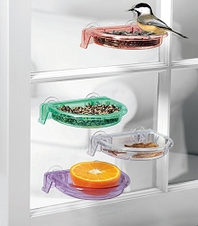 Tweet Spot Dish Feeder with Drainage Holes Assorted Colors Set of 4