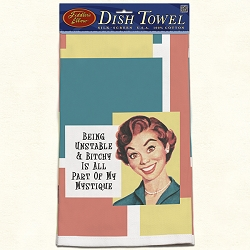 Being Unstable Retro Dish Towel