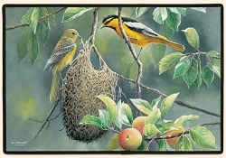 Northern Orioles Doormat