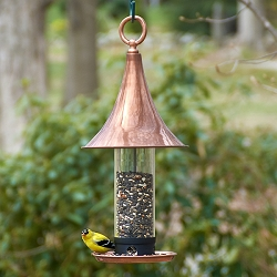 Castella Bird Feeder Medium Brushed Copper