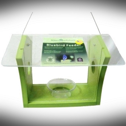 Green Solutions Recycled Plastic Bluebird Feeder