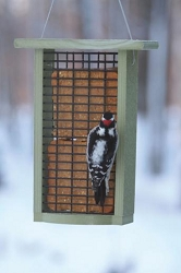 Green Solutions Recycled Plastic Double Suet Feeder