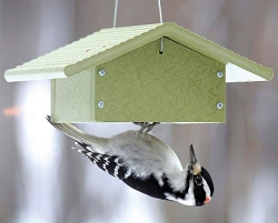 Green Solutions Recycled Plastic Upside Down Suet Feeder