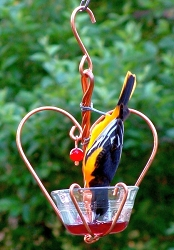 Love Birds Jelly Feeder