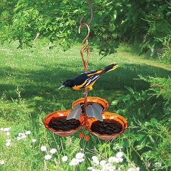 Copper Oriole Jelly Feeder Triple Cup