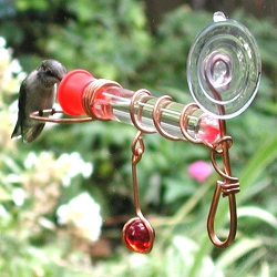 Window Wonder One Tube Hummingbird Feeder