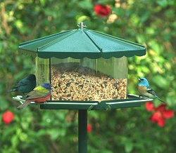 Triple Bin Party Large Capacity Bird Feeder