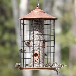 Grande Squirrel-Proof Bird Feeder II