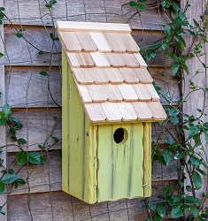 Bluebird Bunkhouse Birdhouse Green Apple