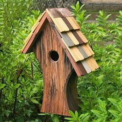 Nottingham Bird House