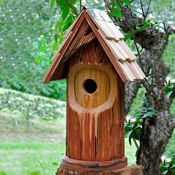 Woodcutter Bird House
